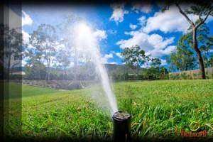 Irrigation Phoenix